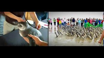 International Fund for Animal Welfare TV Spot - Thumbnail 8