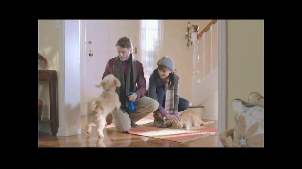 PetSmart Dollar Days Sale TV Commercial, 'Tropical Fish' - Video