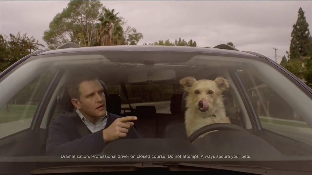Subaru TV Commercial, 'Dog Approved: Last One' - iSpot.tv