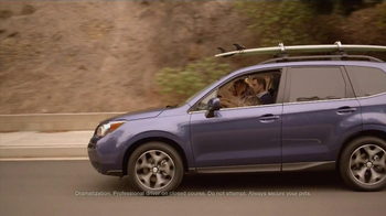 Subaru TV Spot, 'Dog Approved' - Thumbnail 2
