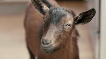 Doritos 2013 Super Bowl TV Spot, 'Screaming Goat' - Thumbnail 7