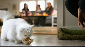 Fancy Feast Delights with Cheddar TV Spot, 'Cheese Tray'  - Thumbnail 10