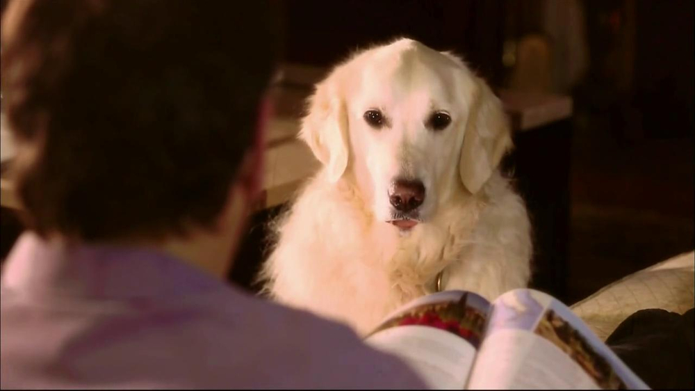 Perillo Tours TV Commercial 'Talking Dog'
