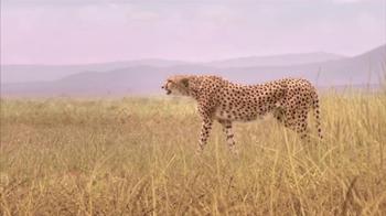 Skechers Super Bowl 2013 Teaser, 'Man vs. Cheetah' - Thumbnail 3