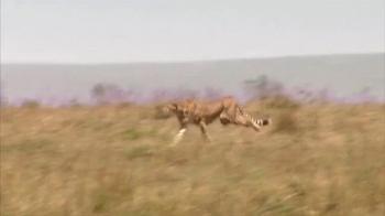 Skechers Super Bowl 2013 Teaser, 'Man vs. Cheetah' - Thumbnail 4