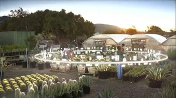 Verizon  Share Everything Plan for Small Business TV Spot, 'Cacti'