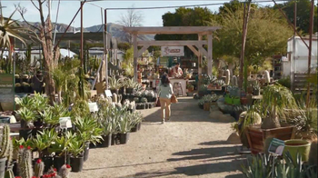 Verizon  Share Everything Plan for Small Business TV Spot, 'Cacti' - Thumbnail 1