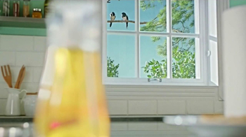 Windex Touch-Up Cleaner TV Spot, 'Crows' - Thumbnail 2