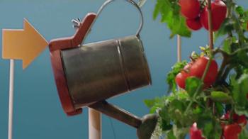Panera Bread TV Spot, 'When Panera Began' - Thumbnail 5