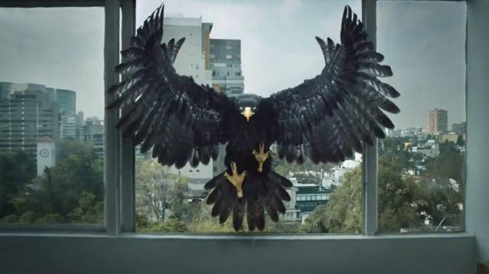 Tecate Light TV Commercial, 'Apartamento'