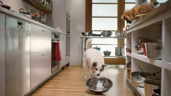 Rachael Ray Nutrish TV Spot, 'If Pets Could Make Their Food' Ft Rachael Ray - Thumbnail 3