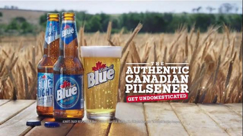 Labatt Blue TV Spot, 'Blue Gold' Song by The Guess Who - Thumbnail 9