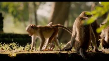 Monkey Kingdom - Alternate Trailer 2