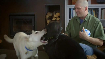 PETCO TV Spot, 'Joanie Loves Chachi' - Thumbnail 2