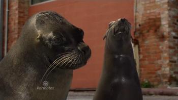 Permatex The Right Stuff TV Spot, 'Seals Go Bad' - Thumbnail 1