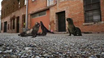 Permatex The Right Stuff TV Spot, 'Seals Go Bad' - Thumbnail 2