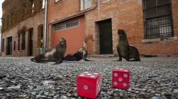 Permatex The Right Stuff TV Spot, 'Seals Go Bad' - Thumbnail 3