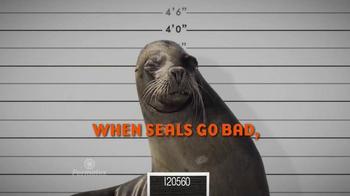 Permatex The Right Stuff TV Spot, 'Seals Go Bad' - Thumbnail 5