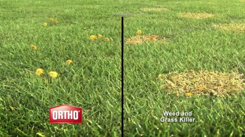 Ortho Weed B Gon TV Commercial, 'Kill Weeds, Not Lawns'