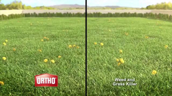 Ortho Weed B Gon TV Spot, 'Kill Weeds, Not Lawns' - Thumbnail 2