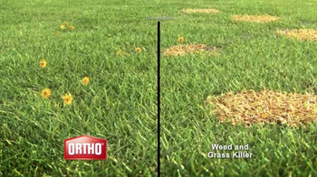 Ortho Weed B Gon TV Spot, 'Kill Weeds, Not Lawns' - Thumbnail 4