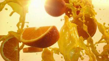Minute Maid Premium Original Orange Juice TV Spot, 'The Goodness of Fruit'