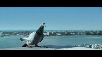 JetBlue TV Spot, 'Flying Shouldn't Ruffle Your Feathers'