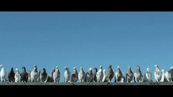 JetBlue TV Spot, 'Flying Shouldn't Ruffle Your Feathers' - Thumbnail 3
