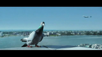 JetBlue TV Spot, 'Flying Shouldn't Ruffle Your Feathers' - Thumbnail 5