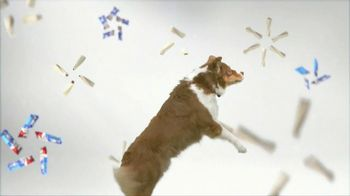Purina Busy TV Spot, 'Get Busy' Song by George Clinton