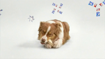 Purina Busy TV Spot, 'Get Busy' Song by George Clinton - Thumbnail 3