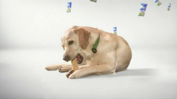 Purina Busy TV Spot, 'Get Busy' Song by George Clinton - Thumbnail 6