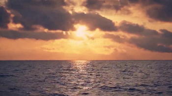 Alabama Gulf Seafood TV Spot, 'The Oyster is Our World' - Thumbnail 1