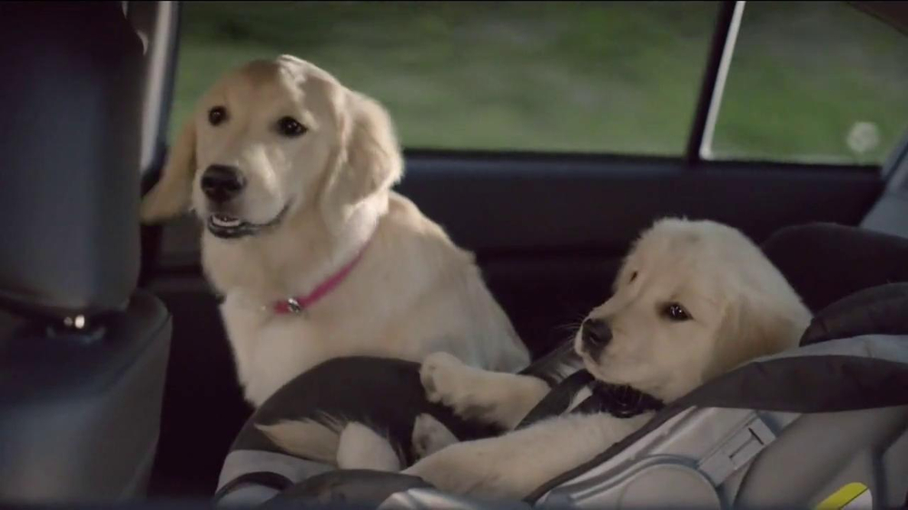 Toyota Commercial Song >> Subaru TV Commercial, 'Dog Tested' - iSpot.tv