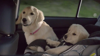 Subaru TV Spot, 'Dog Tested'
