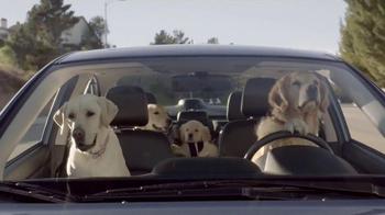 Subaru TV Spot, 'Dog Tested' - Thumbnail 9