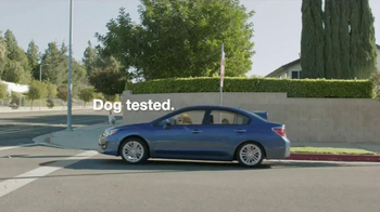 Subaru TV Spot, 'Dog Tested: In the Dog House' - Thumbnail 10