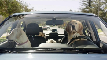 Subaru TV Spot, 'Dog Tested: In the Dog House' - Thumbnail 3