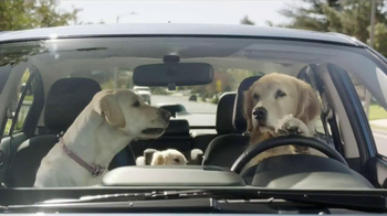 Subaru TV Spot, 'Dog Tested: In the Dog House' - Thumbnail 8