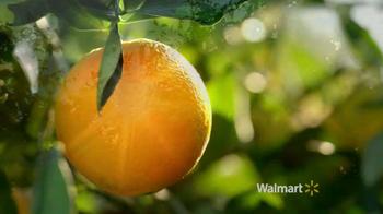 Walmart TV Spot, 'Oranges' - Thumbnail 1