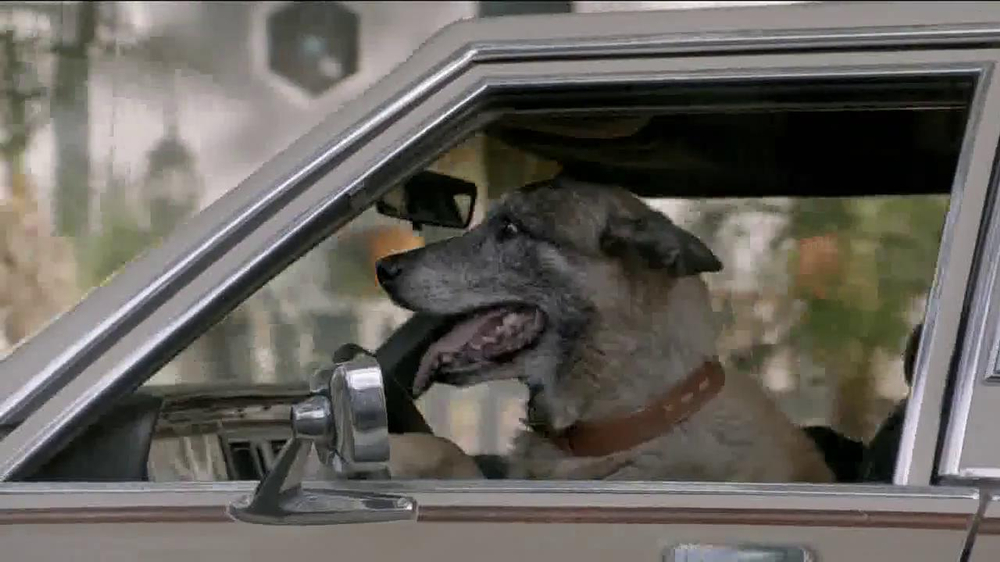 Subaru TV Commercial, 'Dog Tested: Slow Car' - iSpot.tv
