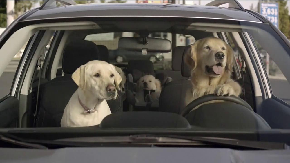 Toyota Commercial Song >> Subaru TV Commercial, 'Dog Tested: Gas Station' - iSpot.tv