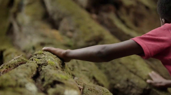 Discover the Forest TV Spot, 'No Boundaries' - Thumbnail 4