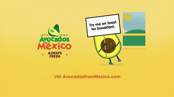 Avocados From Mexico TV Spot, 'Rise and Shine' - Thumbnail 9