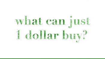 USAid TV Spot, 'One Dollar'