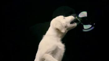 Nickelodeon TV Spot, 'Bubble Puppy' - Thumbnail 2