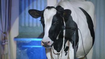Real California Milk TV Spot, 'Part of the Family: Wedding' - Thumbnail 7