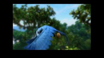 Discover the Forest TV Spot, 'Rio 2' - Thumbnail 1