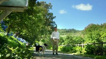 Claritin TV Spot, 'Spring Flowers' - Thumbnail 7