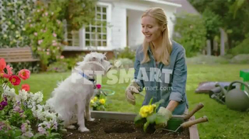 PetSmart Spring Savings Sale TV Spot, 'Dig the Savings' - Thumbnail 10